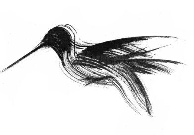 Formas breves de la poesía japonesa: Félix Arce Araiz (Bilbao, España)