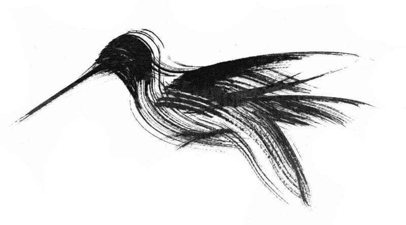 Formas breves de la poesía japonesa: Leticia Sicilia Saavedra (Gran Canaria, Islas Canarias, España). Selección Roxana Dávila Peña