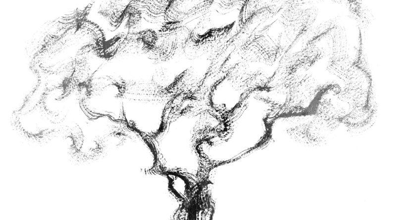 Formas breves de la poesía japonesa: Haikus de Aníbal Beça (Brasil)