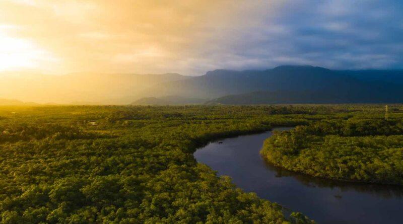 Amazonas: Poetas brasileñas del siglo XX